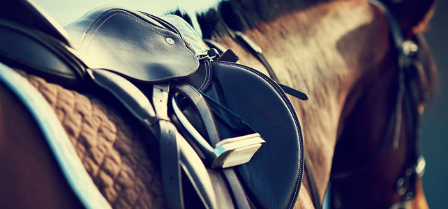horse riding lessons hertfordshire